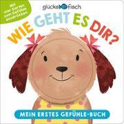 Cover-Bild zu Seal, Julia (Illustr.): Glücksfisch: Wie geht es dir? Mein erstes Gefühle-Buch