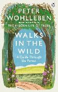 Cover-Bild zu Wohlleben, Peter: Walks in the Wild
