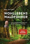 Cover-Bild zu Wohlleben, Peter: Wohllebens Waldführer