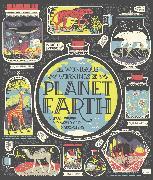 Cover-Bild zu Ignotofsky, Rachel: The Wondrous Workings of Planet Earth