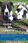 Cover-Bild zu Jones, Laura S: Saving Sadie and Sasha