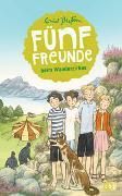 Cover-Bild zu Blyton, Enid: Fünf Freunde beim Wanderzirkus