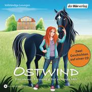 Cover-Bild zu Thilo: Ostwind - Für immer Freunde & Die rettende Idee