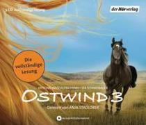 Cover-Bild zu Henn, Kristina Magdalena: Ostwind - Aufbruch nach Ora