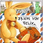 Cover-Bild zu Langen, Annette: Briefe von Felix