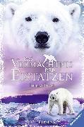 Cover-Bild zu Lasky, Kathryn: Das Vermächtnis der Eistatzen, Band 2: Immerfrost (eBook)
