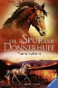 Cover-Bild zu Lasky, Kathryn: Die Spur der Donnerhufe 1: Flammenschlucht (eBook)