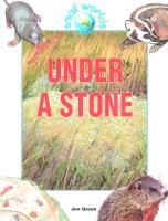 Cover-Bild zu Green, Jen: Under a Stone