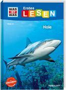 Cover-Bild zu Braun, Christina: WAS IST WAS Erstes Lesen Band 16. Haie