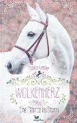 Cover-Bild zu Giebken, Sabine: Wolkenherz - Eine Fährte im Sturm