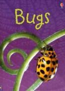 Cover-Bild zu Bowman, Lucy: Bugs