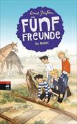 Cover-Bild zu Blyton, Enid: Fünf Freunde im Nebel