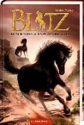 Cover-Bild zu Farley, Walter: Blitz (Bd. 3)