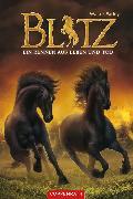 Cover-Bild zu Farley, Walter: Blitz (Band 4) (eBook)