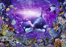 Cover-Bild zu Unterwasserromantik