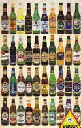 Cover-Bild zu Bier