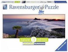 Cover-Bild zu Im Wolkenmeer