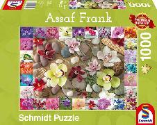 Cover-Bild zu Orchideen