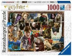 Cover-Bild zu Harry Potter gegen Voldemort