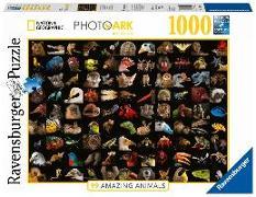 Cover-Bild zu Atemberaubende Tiere