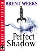 Cover-Bild zu Perfect Shadow (eBook) von Weeks, Brent