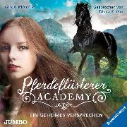 Cover-Bild zu Pferdeflüsterer-Academy. Ein geheimes Versprechen (Audio Download) von Mayer, Gina