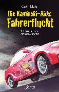 Cover-Bild zu Meier, Carlo: Die Kaminski-Kids: Fahrerflucht (eBook)