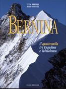 Cover-Bild zu Bernina. Il quattromila tra Engadina e Valmalenco von Vannuccini, Mario
