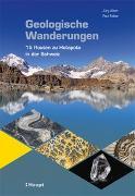 Cover-Bild zu Geologische Wanderungen
