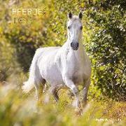 Cover-Bild zu Pferde 2022 - Broschürenkalender 30x30 cm (30x60 geöffnet) - Kalender mit Platz für Notizen - Horses - Bildkalender - Wandplaner - Alpha Edition