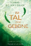 Cover-Bild zu Bodenheimer, Alfred: Im Tal der Gebeine (eBook)