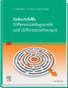 Cover-Bild zu Schlembach, Dietmar (Hrsg.): Geburtshilfe Differenzialdiagnose, -therapie (eBook)