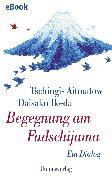 Cover-Bild zu Begegnung am Fudschijama (eBook) von Ikeda, Daisaku