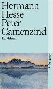 Cover-Bild zu Peter Camenzind von Hesse, Hermann