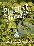 Cover-Bild zu Vehlmann, Fabien: Beautiful Darkness