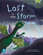 Cover-Bild zu Newson, Karl: Bug Club Shared Reading: Lost in the Storm (Year 1)