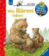 Cover-Bild zu Wie Bären leben von Möller, Anne