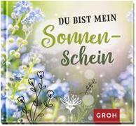 Cover-Bild zu Du bist mein Sonnenschein von Groh Redaktionsteam (Hrsg.)