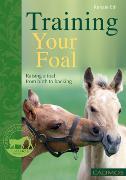 Cover-Bild zu Training Your Foal (eBook) von Ettl, Renate