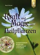 Cover-Bild zu Kraft und Magie der Heilpflanzen von Beiser, Rudi