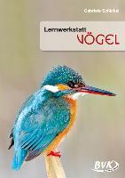 Cover-Bild zu Lernwerkstatt Vögel von Schickel, Gabriele