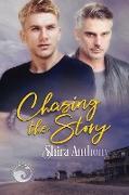 Cover-Bild zu Anthony, Shira: Chasing the Story (eBook)