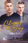 Cover-Bild zu Anthony, Shira: Chasing the Story