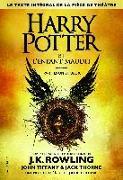 Cover-Bild zu Rowling, Joanne K.: Harry Potter et l'Enfant Maudit - Parties une et deux