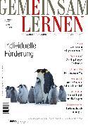 Cover-Bild zu Individuelle Förderung (eBook) von Fischer, Christian