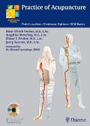Cover-Bild zu Practice of Acupuncture von Hecker, Hans-Ulrich