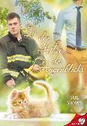 Cover-Bild zu Brown, Sue: In der Hitze des Augenblicks (eBook)