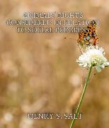 Cover-Bild zu Animals' Rights Considered in Relation to Social Progress (eBook) von Salt, Henry S.