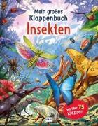 Cover-Bild zu Mein großes Klappenbuch - Insekten von Green, Rod