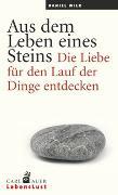 Cover-Bild zu Aus dem Leben eines Steins von Wilk, Daniel